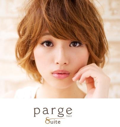 parge_concept